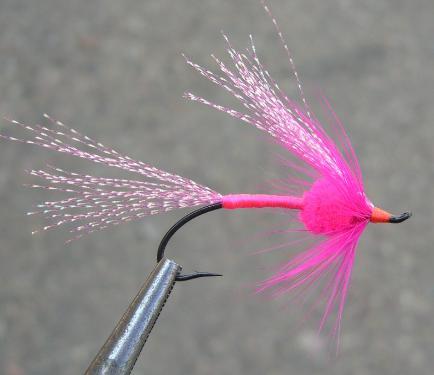 Bright Roe Salmon and Steelhead Fly